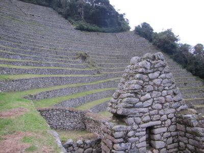Terraces at Wiñay Wayna