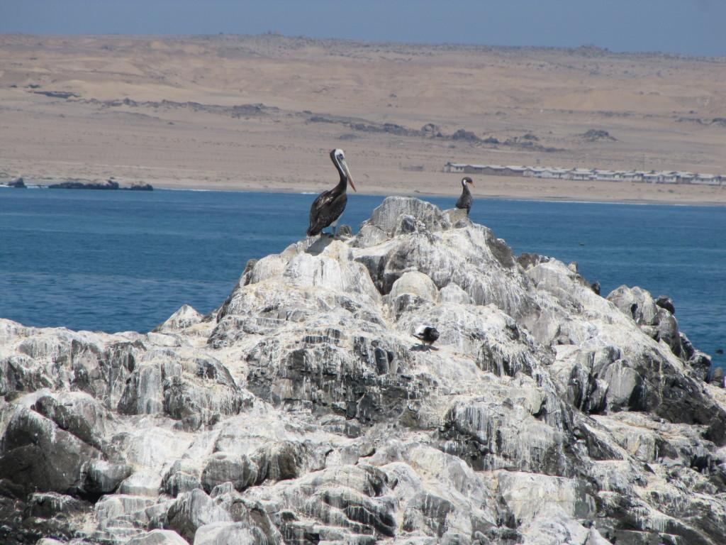 Bahía Inglesa, Chile